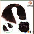 Best Quality Brzilian Human Hair Thick Bottom Clip In/Clip On Hair Extension