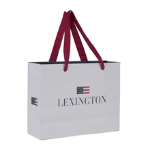 Hot selling popular promotion custom print paper carrier <strong>bag</strong>