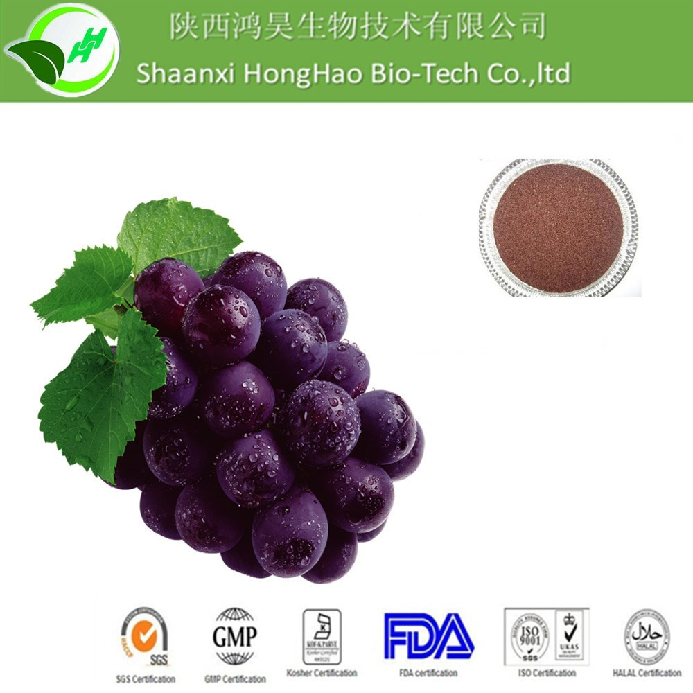 Cosmetic grade for Skin Whitening Herbal Extract Anti-oxidant Grape Seed Extract Oligomeric Proantho Cyanidins(OPC)95%