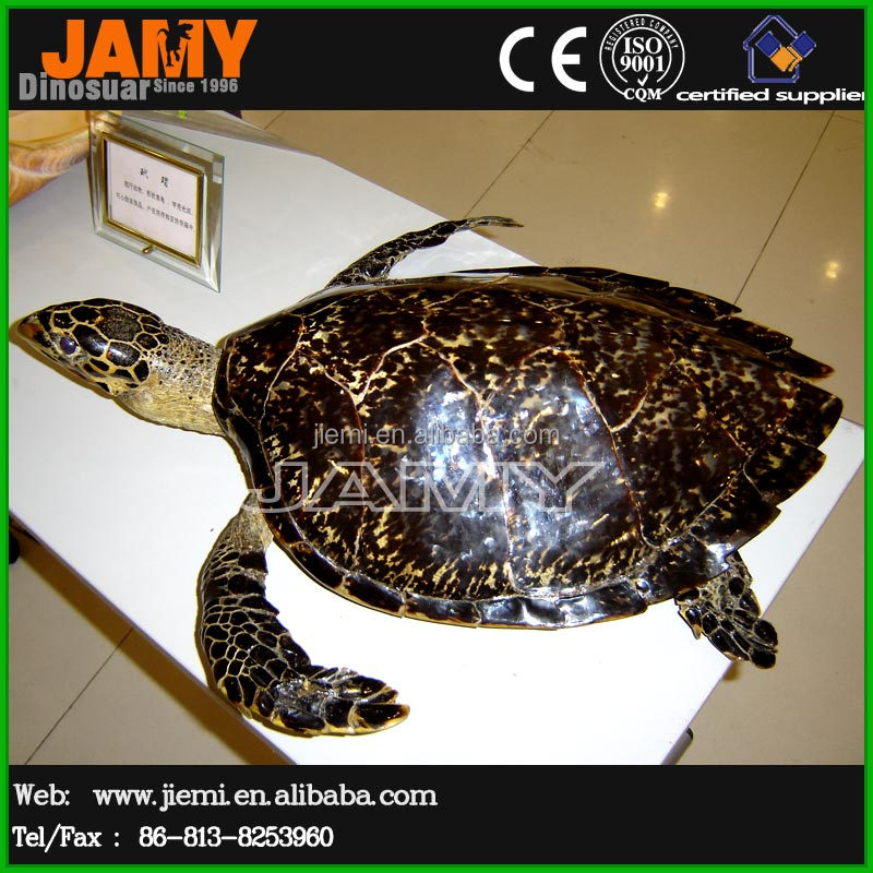Ocean Park fiberglass turtle model for sale