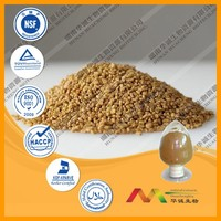 NSF-GMP Supplier provide health products Fenugreek Seed Extract powder