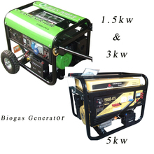 China Biogas Generator Price 1.5KW, 3KW, 5KW for family Size Biogas Plant