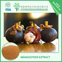 Factory wholesale product Freeze Dried Mangosteen Fruit powder mangosteen powder free sample
