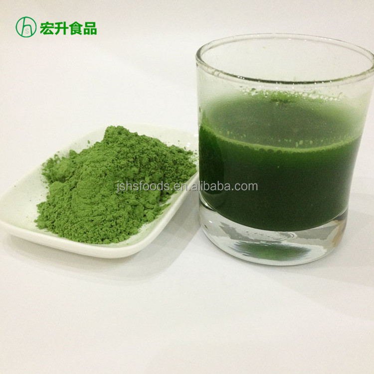 Barley Grass Juice Powder For Instant Drinking 300-500 Mesh