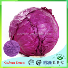 organic red cabbage vagetable juice extract powder