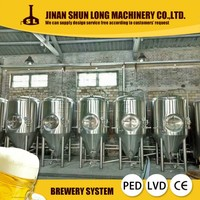 Cheap Price 5hl 500l Beer Plant
