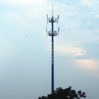 Gsm Steel Antenna Telecommunication Communication Monopole