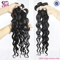 Factory price 100% Virgin Malaysian Hair deep Curly virgin remy hair