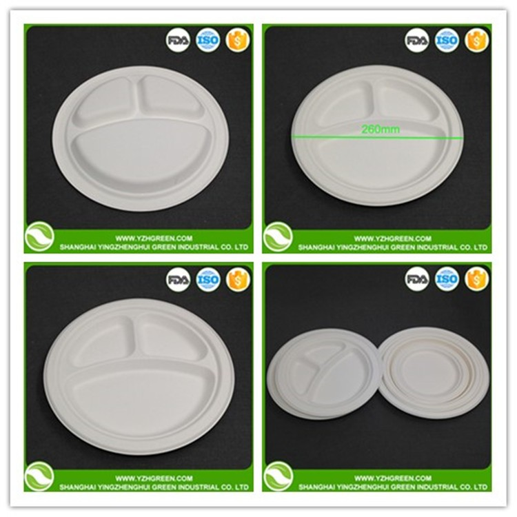 Plate 10inch Disposable Biodegradable Sugarcane Bagasse Plate