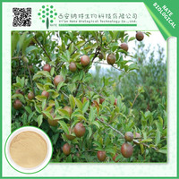 Factory supply competitive price Tea Seed Extract Powder 20% Tea Saponin