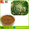 Organic Jerusalem Artichoke Extract Wholesale Inulin 90%,Pure Inulin Powder