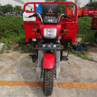 2014 200cc passenger cargo tricycle for passenger