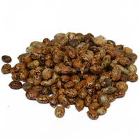 Bi Ma A Kind of Oil Seeds Zibo Castor Seeds