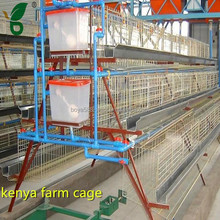 big capacity egg layer battery chicken cage in kenya
