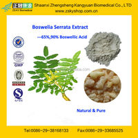 GMP Certified Manufacturer Supply High Quality Boswellic Acid