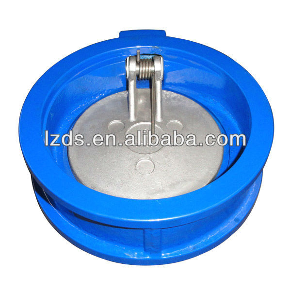 2 Inch Cast Iron Stainless Steel Single Disc Swing Check Valve PN16