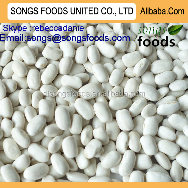 Different types white kidney beans