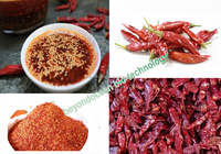 local Chinese hot spices-chili red color