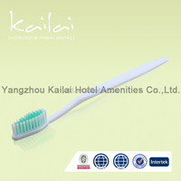 clear pvc toothbrush mini toothbrush with toothpaste inside hotel soap toothbrush