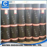 Torch applied APP modified bitumen waterproof membrane 3mm 4mm