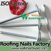 best selling corrugated electro galvanized umbrella head smooth leading roofing nails
