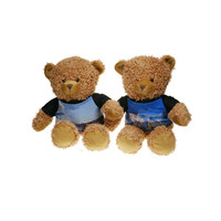 Dubai popular best selling mini bear plush toys for crane machine