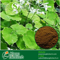 Epimedium Extract, GMP certified Factory, 20% Icariin sexual stimulant