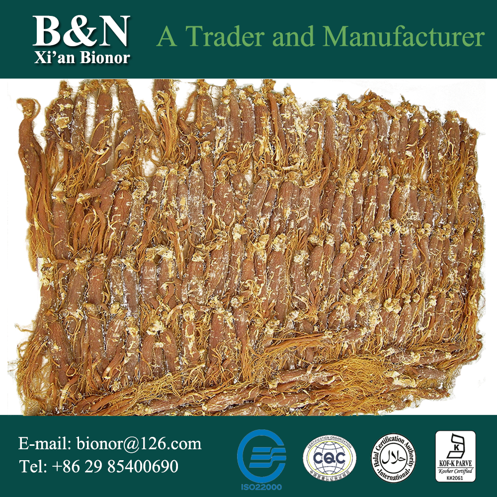 good quality ginseng market price of Bottom Price