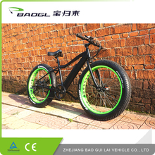 New products Guaranteed quality unique electric fat bike mid drive motor,green power electric bike classic 5