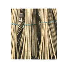 FD-20180102 Natural bamboo rod/high quality bamboo /<strong>rice</strong> white bamboo pole