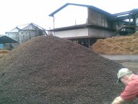 Palm Kernel Shell and By product