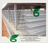 Direct Factory 3-4 layers layer chicken battery cage/used poultry battery cages for sale/poultry equipment for chicken(Supplier)