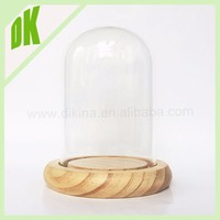 glass ball globe with black & white base / terrarium / indoor garden cloche & dome / clear glass hemisphere domes