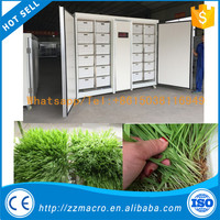 High Quality Bean Seedling/Sunflower Shoots/Peanut automatic mung bean sprout machine