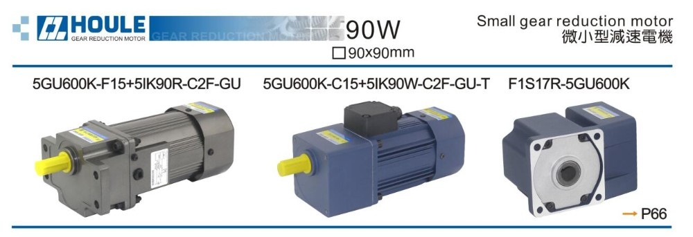 HOULE 90W gear reduction electric motor