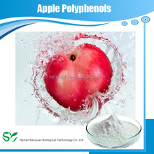 Competitive price water soluble apple extract & natural apple polyphenols