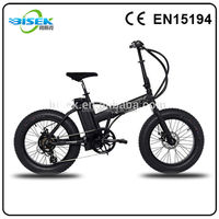 20inch 4.0 fat tire electric dirt cheap motorcycles