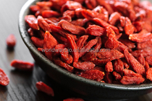 free sample HACCP KOSHER FDA Chinese Ningxia red wolfberry polysaccharide powder goji berry extract