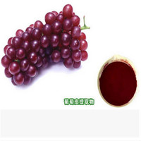 Food Color Plant Extract Organic Grape Peel Extract 10;1-20:1 Food Color