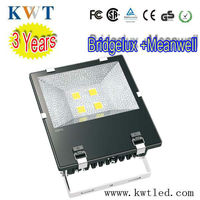 led reflector 12v Bridgelux + Meanwell driver water proof floodlights