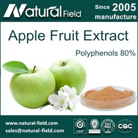 Pure Natural Apple Extract Polyphenols 80% for Anti-oxidant