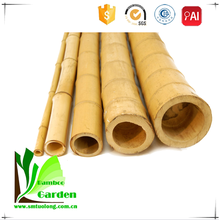 Moso Natural Round Dried Bamboo Sticks /Poles/Canes for Sale