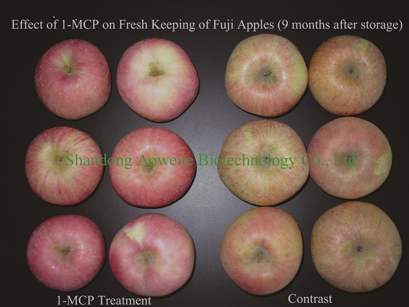 1-MCP, 1-Methylcyclopropene, Keep Apple and Fruits in Fresh