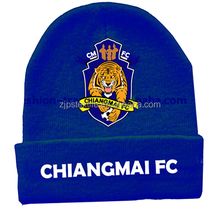 zhenjiang wholesale beautiful knitted caps and hats for man and woman
