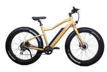 36V/350W Bafang rear motor snow mountain e bike/fat tire electric bike