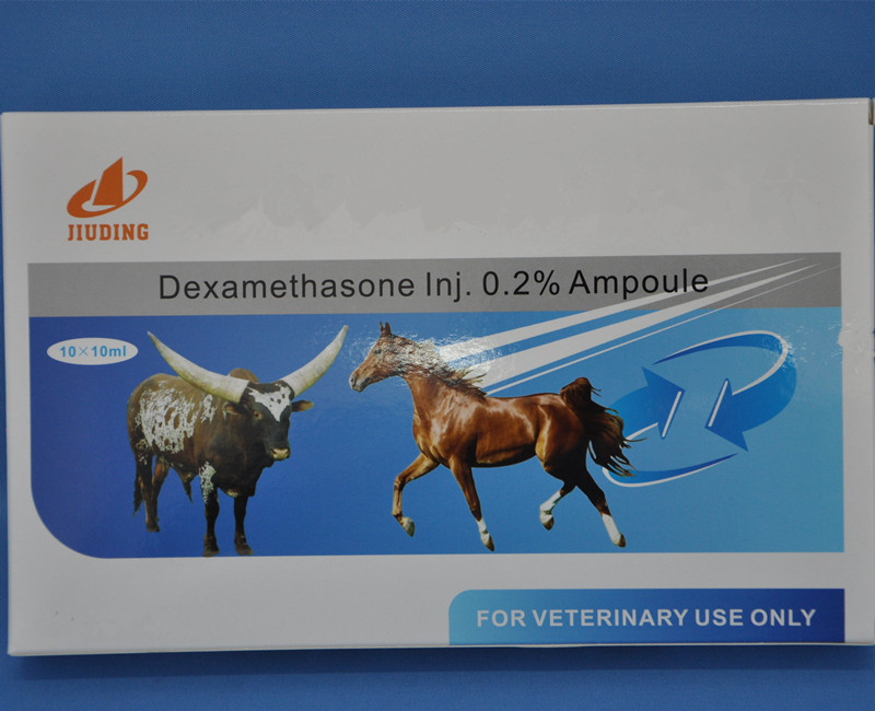 top veterinary pharmaceutical companies of dexamethasone injection ampoule bottle