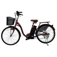 Cheap Chinese 750W Electric Bike