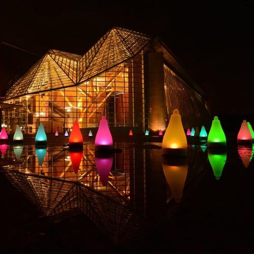 Coloré Chine fournisseurs Décoration Lumineux LED Extérieur Solaire on