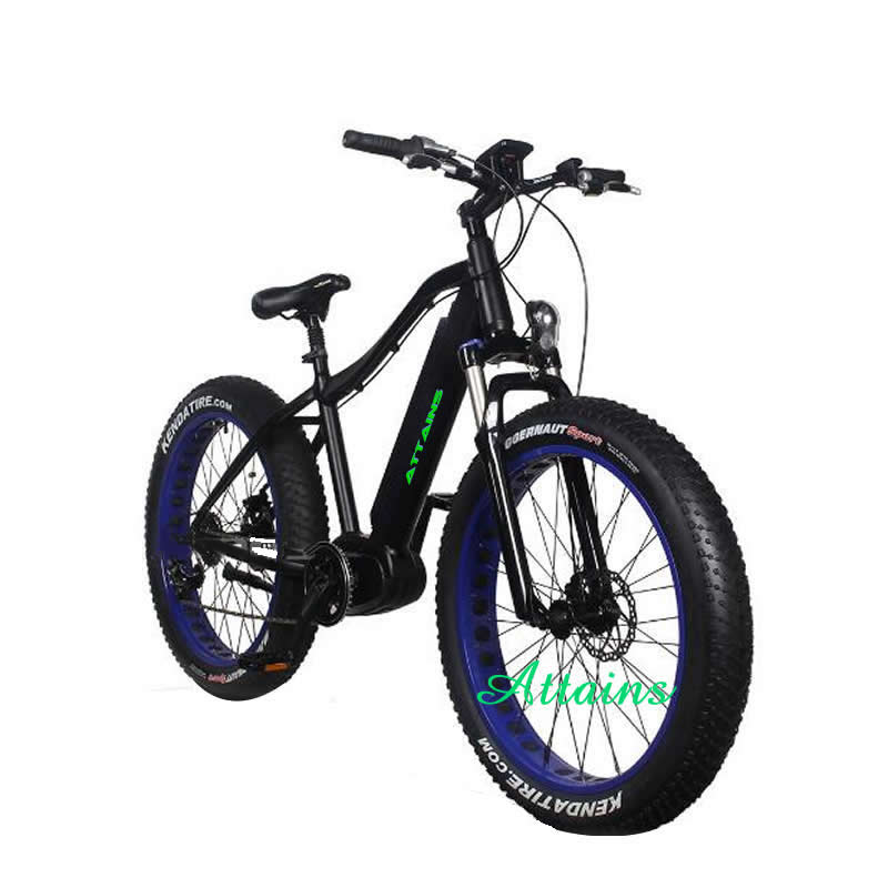 Brand new technology price motor electric bike for sale