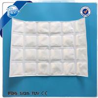 Dry Ice Gel Pack Sheet OEM 24 Cells 20Cells 15Cells 12Cells 9Cells